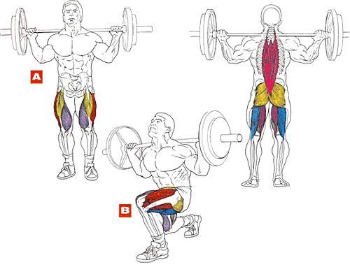 тренировка мышц  ног выпады