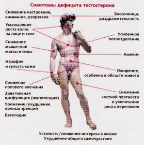 сбои выработки тестостерона следствие