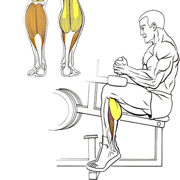 тренировка ног икр