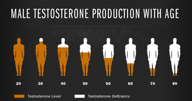количество тестостерона с возрастом